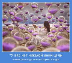 """в жизни,кроме Радости и Благодарности"""".Будда"""