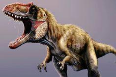 New dinosaur 'terrorized' early T-Rex