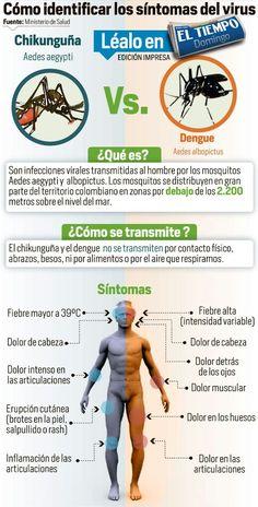 Cómo identificar el chincungunya del dengue
