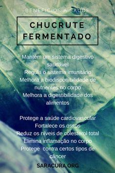 Fermented(1)