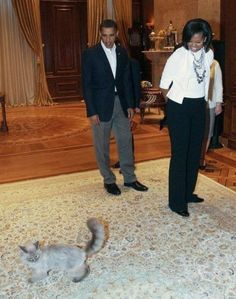 Medvedev's cat Dorofei meets the Obamas      OMG!  Not only does the president of Russia have a cat, but he travels with his cat as well.  Russians are crazy cat people too.