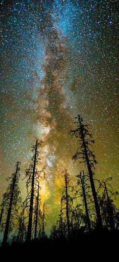Milky Way. Photographer Toby Harriman: www.wanderingeduc& Milky Way. Photographer Toby Harriman: www.wanderingeduc& The post Milky Way. Photographer Toby Harriman: www.wanderingeduc& appeared first on Pink Unicorn. All Nature, Science And Nature, Amazing Nature, Photos Of Nature, Heart In Nature, Space Photos, Nature Images, Night Photography, Amazing Photography