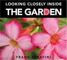 Looking Closely inside the Garden by Frank Serafini.