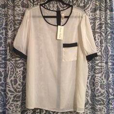 Shop Women's Roman Fashion Black White size Blouses at a discounted price at Poshmark. Description: Sheer, floaty off white with black button up back detailing. Black Button, Button Up, Roman Fashion, Off White, Black And White, Back Details, Short Sleeve Dresses, Tunic Tops, Blouses