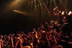 BRAHMAN | NO NUKES 2012 | フォトレポート | RO69(アールオーロック) - ロッキング・オンの音楽情報サイト