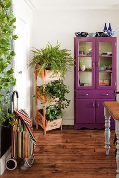indoor plants timber boxes mar14