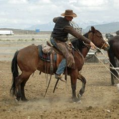 nothing hotter than a working cowboy....
