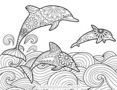Leaping Dolphins Coloring Page Design Dolphin Coloring Pages