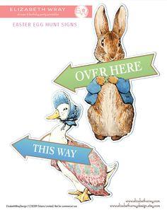 23 Best Freyas 1st Birthday Images Peter Rabbit Birthday Peter
