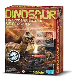 Dig A Dino Series II - Have a birthday coming up for a kid who loves dinosaurs? This dig kit might be just for you! The set includes a large plaster brick so that your child can see what it's like to be a paleontologist! They can unearth the dinosaur skeleton hidden within by digging in the block with a digging tool! Once the dinosaur skeleton has been unearthed it can be cleaned and displayed to show off their hard work.