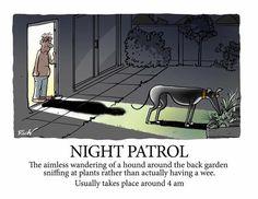 Skipworth, Rich - Ah, 4am Boredom (Greyhound Night Patrol)