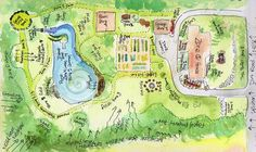 Permaculture in Action – Five Year Regeneration Model Site (My 3 ...
