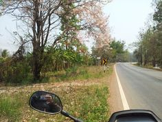 Go to Thanathorn Fang city @chiangmai lonely trip20-03-2013