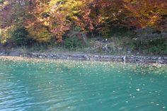 Fotografía: Elsa Mallol - Plitvice Elsa, River, Mountains, Nature, Outdoor, Lake Garda, Fotografia, Paisajes, Places