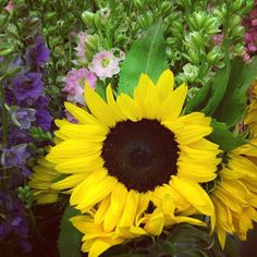 Pretty sunflowers in our warehouse! #Indy #Sunflower #Blooms #Flowers #FlowerOfTheDay #Pretty