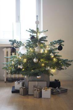 Joulukuusitarinan kaksi eri puolta…