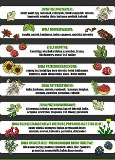 Wellness Tips, Health And Wellness, Health Fitness, Healthy Tips, Healthy Recipes, Bushcraft, Flower Power, Natural Remedies, Herbalism