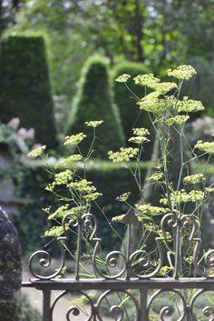 Les Jardins Agapanthe, Normandy, Alexandre Thomas