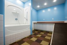 dog grooming station - Google Search  TUBS