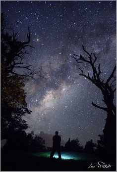 Lovely Nightscapes.    Photographer Luc Perrot captures the beauty of the vast night skies.