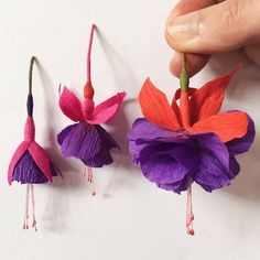 Paper Fuchsia flowers by A Petal Unfolds