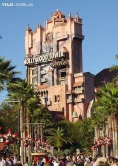 4 meses girando por Walt Disney World