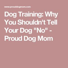 """Dog Training: Why You Shouldn't Tell Your Dog """"No"""" - Proud Dog Mom"""