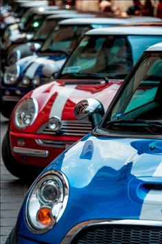 Pretty little MINIs all in a row. <3