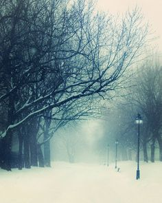 'Listen the Snow is Falling' --- parc Laurier in Montreal, Canada by The Lonely Pixel Photography, $30.00