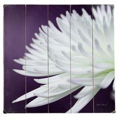 chrysanthemum wall art {Joss & Main} $32.95
