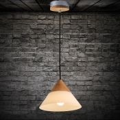 Frosted Glass Cone Shaded Elegantly Designer Wood Mini Pendant Light