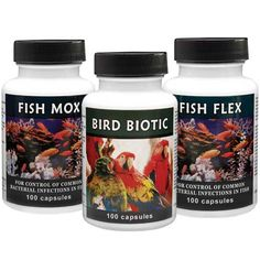 Thomas Labs Fish and Bird antibiotics from Revival Animal Health