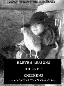 Out of the mouth of babes....Eleven Reasons To Keep Chickens....according to a 7 year old