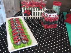 The Subfertile Frugalista: Ladybug Birthday Party