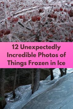 12 Unexpectedly Incredible Photos of Things Frozen in Ice Funky Nails, Cute Nails, Beautiful Cats, Beautiful Gardens, Fashion Necklace, Fashion Rings, Strap Heels, Ankle Strap, Braided Hairstyles