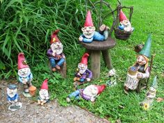 gnomes garden - Google Search