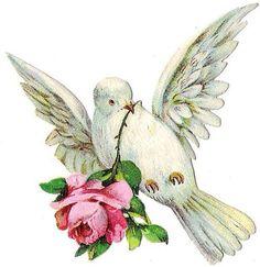 Die Cut, Shabby Chic Christmas, Rose Art, Good Notes, Vintage Birds, Old Paper, Paper Models, Cherub, Bird Art