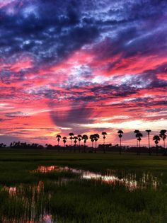 Amazing Sunset in #Cambodia #Sunset #gay #gaytravel #OUTAdventures #OUTinCambodia #guysThatTravel #luxurytravel http://www.out-adventures.com/trip/lesbian-and-gay-cambodia-784/