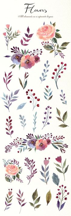 230 Watercolor graphic elements by MoleskoStudio on Creative Market 230 Watercolor graphic elements Floral Wreath Watercolor, Watercolor Cards, Watercolour Painting, Watercolor Flowers, Painting & Drawing, Drawing Flowers, Painting Flowers, Watercolors, Illustration Blume