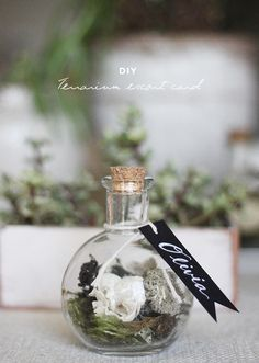 DIY terrarium escort cards by Kelli Murray | DIY Wedding, Favors + Gifts | 100 Layer Cake