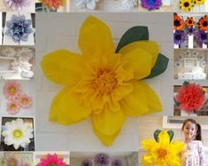 Paper pom pom flowers weddings decorations flower wall backdrop birthday pink choose colours available Pom Pom Flowers, Tissue Paper Flowers, Flower Garlands, All Flowers, Flower Wall Backdrop, Wall Backdrops, Party Centerpieces, Flower Centerpieces, Paper Sunflowers