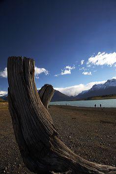 People by glacier lake, Patagonia, Argentina.