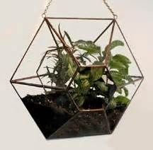 click for close up snowflake terrarium this terrarium is six sided and ...