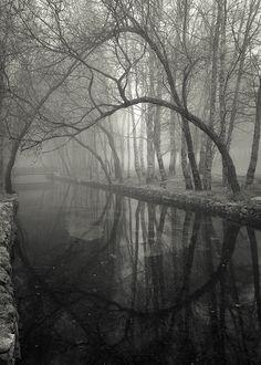 The Little Bridge by Jose Viegas on Flickr.