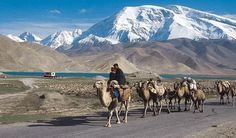 XINJIANG is one of the most exciting provinces in China. Covering 16% of China's land surface, situated 3,000 km from the coast.  It borders Mongolia, CIS Central Asia, Afghanistan, Pakistan, & India.