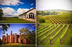 barboursville vineyard // the octagon. Barboursville Vineyard, Barolo Wine, Virginia Wineries, California Wine, Northern California, Chicago Travel, Celebrity Travel, Wine Time, Travel And Leisure