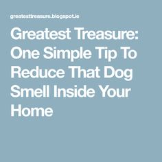Greatest Treasure: One Simple Tip To Reduce That Dog Smell Inside Your Home