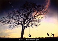 © Stock Connection Distribution / Alamy Silhouette of two children running to tree with tire swing sunset