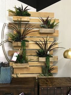 Lies You've Been Told About Modern and Elegant Vertical Wall Planter Pots Ideas At the same time that you can cram a lot into a little garden, make ce. Hanging Wall Planters, Vertical Wall Planters, Vertical Herb Gardens, Ornamental Plants, Minimalist Home Decor, Garden Stones, All Flowers, Planter Boxes, Mason Jars