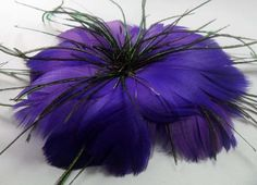purple/black feather